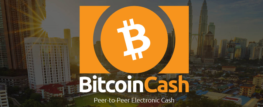 future hold for Bitcoin Cash